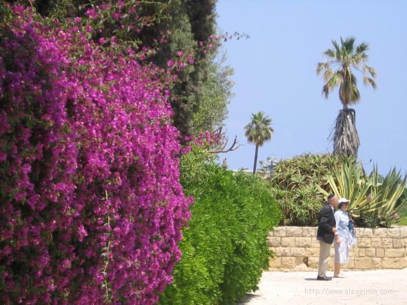 Израиль-Тель-Авив-Яффо