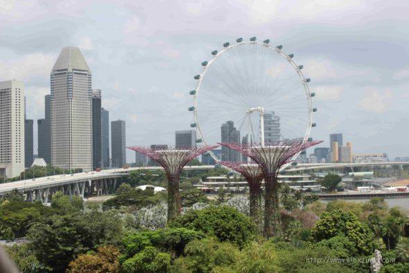 сады у залива вид на колесо обозрения в сингапуре