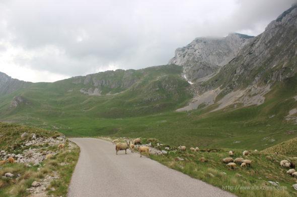Дороги в Черногории - Дурмитор