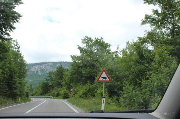 Аренда авто в Черногории - вид на дорогу из окна автомобиля
