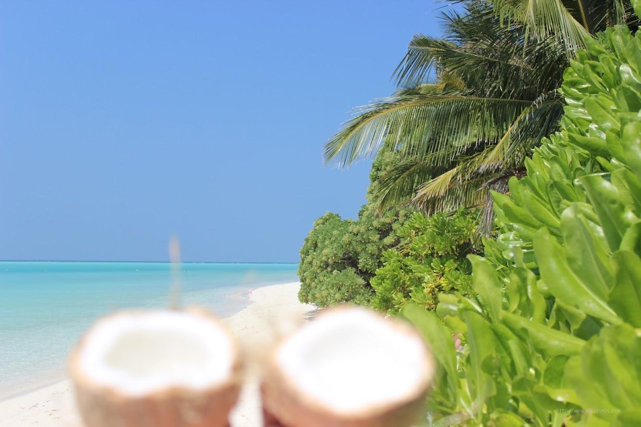 Мальдивы. Кокосы на острове Тодду