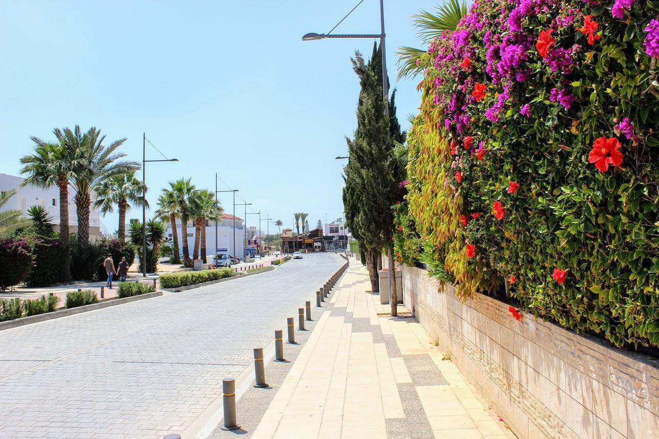 Айя Напа. Что нужно для аренды авто на Кипре