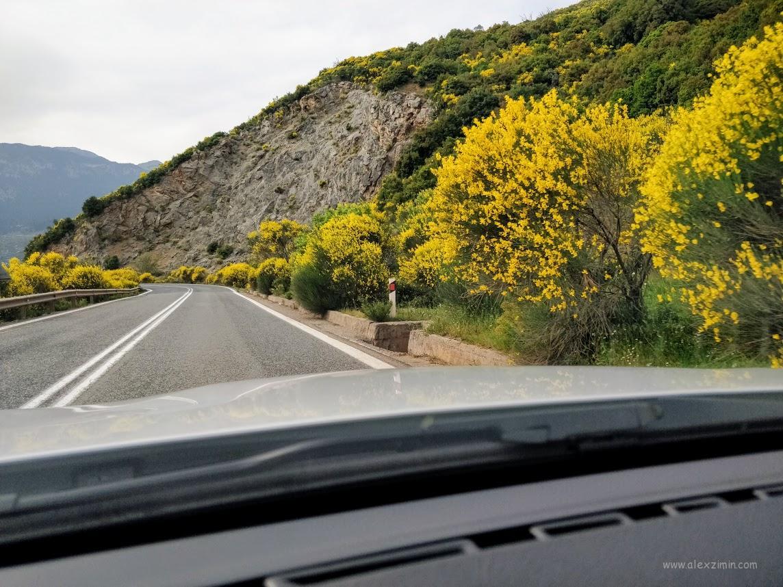 Красивые дороги в Греции. Едем в сторону древнего города Дельфы