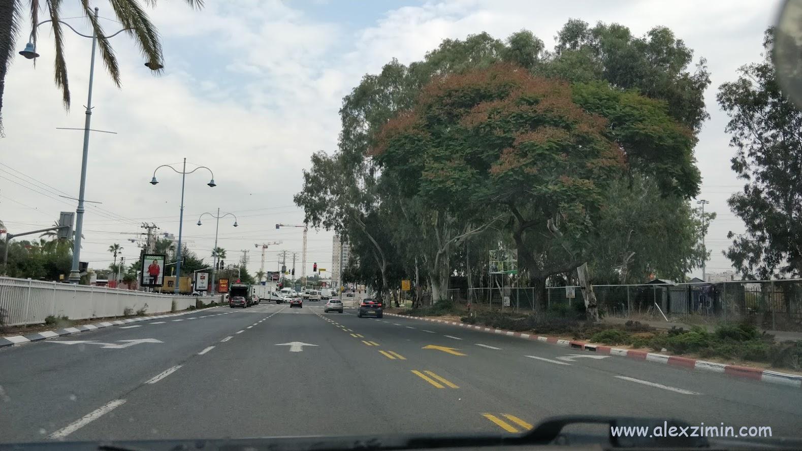Выделенная желтая полоса для движения автобусов и такси